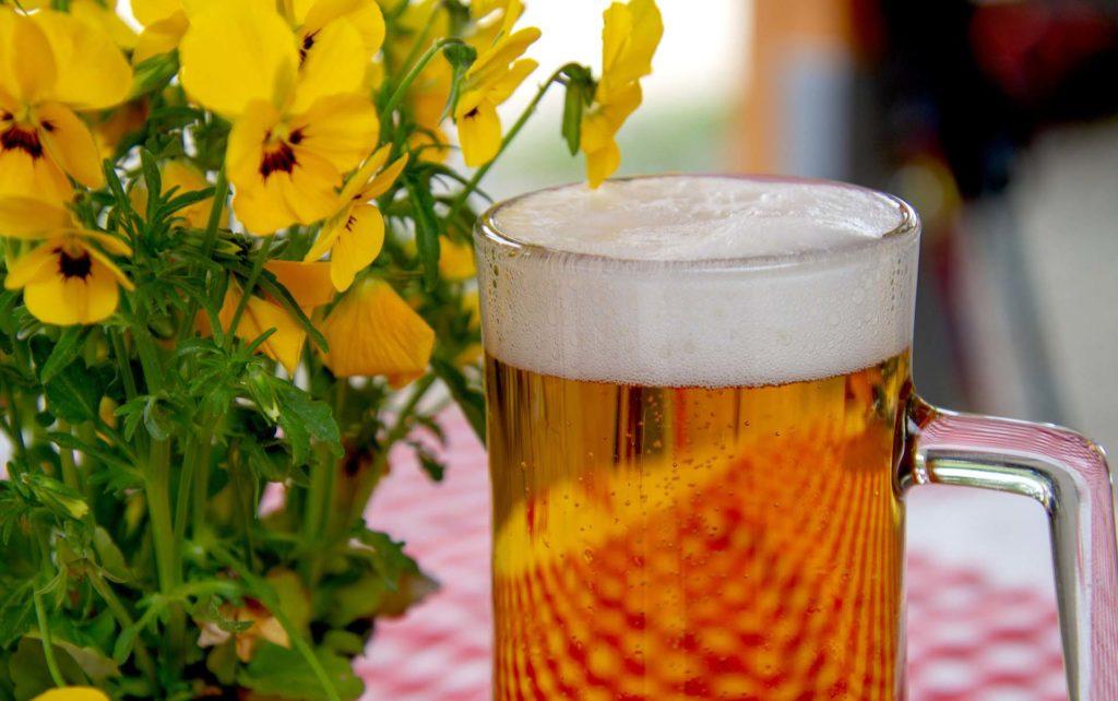 tipos de cervezas